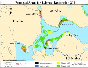 Proposed_Eelgrass_Restoration_2014-1